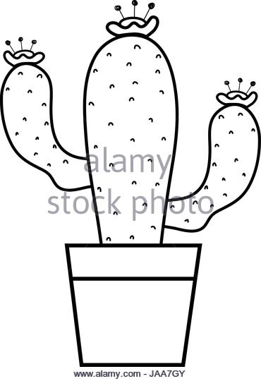 Cactus Flower Clipart Black And White.