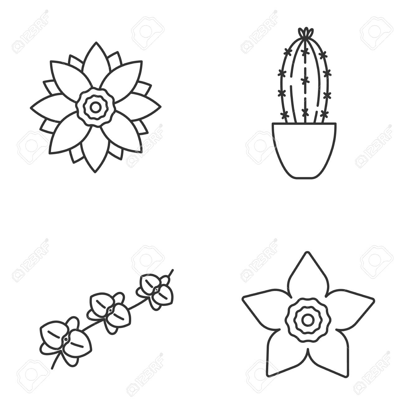 Flowers linear icons set. Lotus, narcissus, orchid, branch, cactus...
