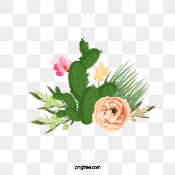 Cactus Flower PNG Images.