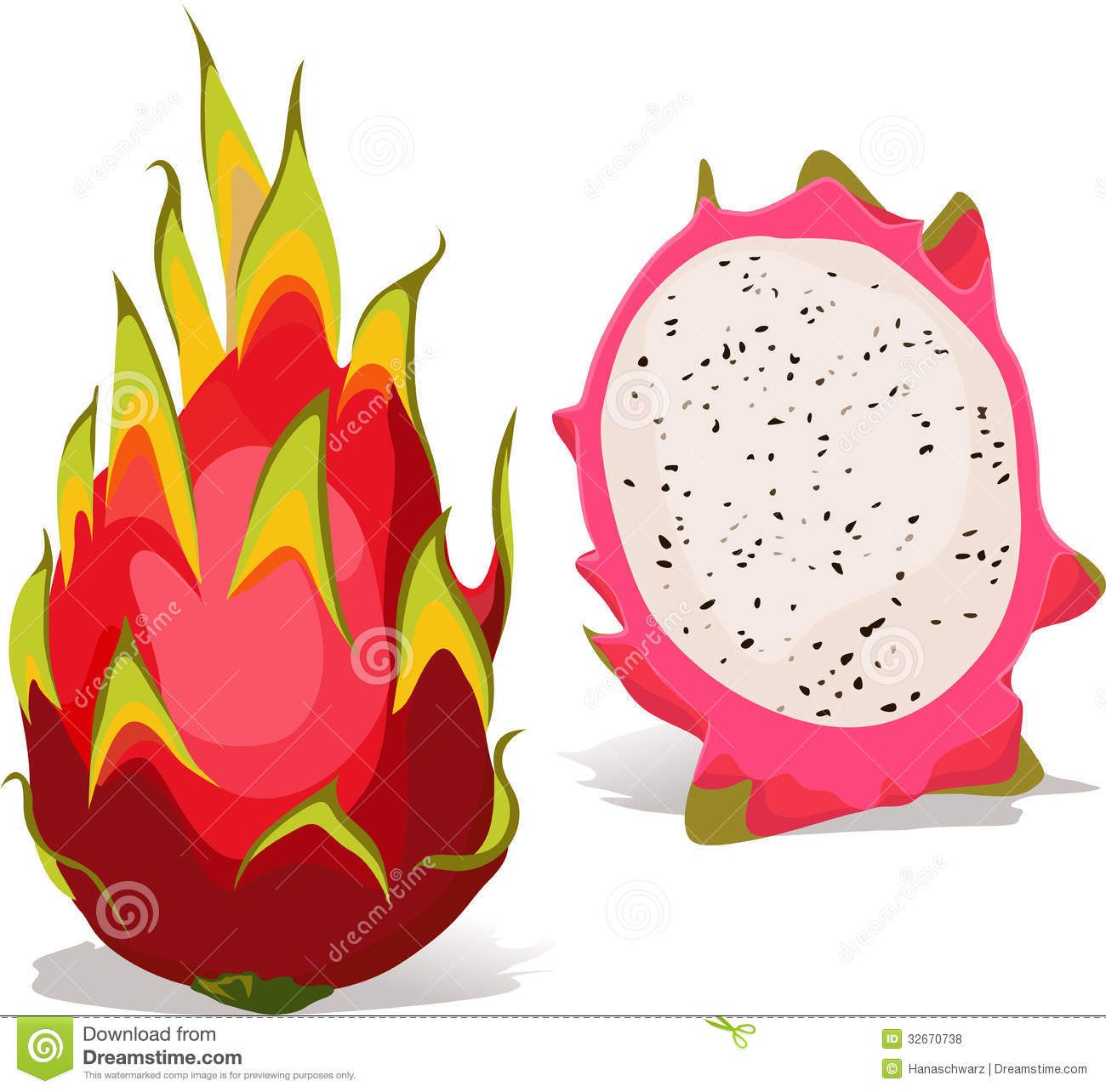 Dragon fruit clipart.
