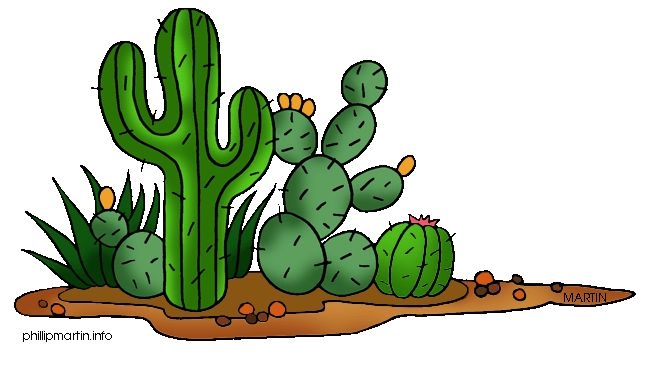 New Mexico Cactus Clipart Clipground