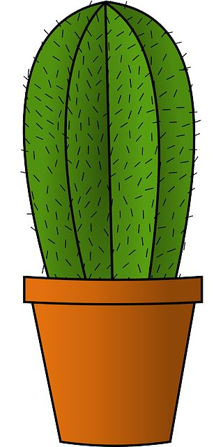 Cactus Green Clipart Clipground