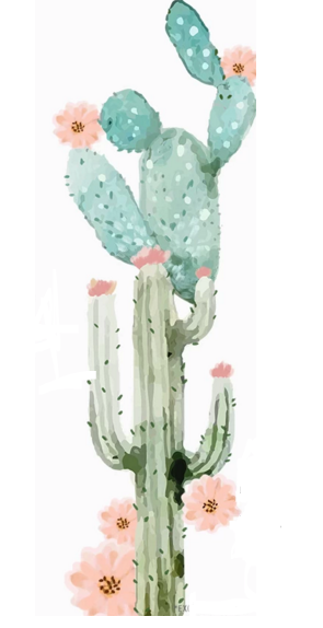 cactus watercolor // Sonia cavallini illustration.
