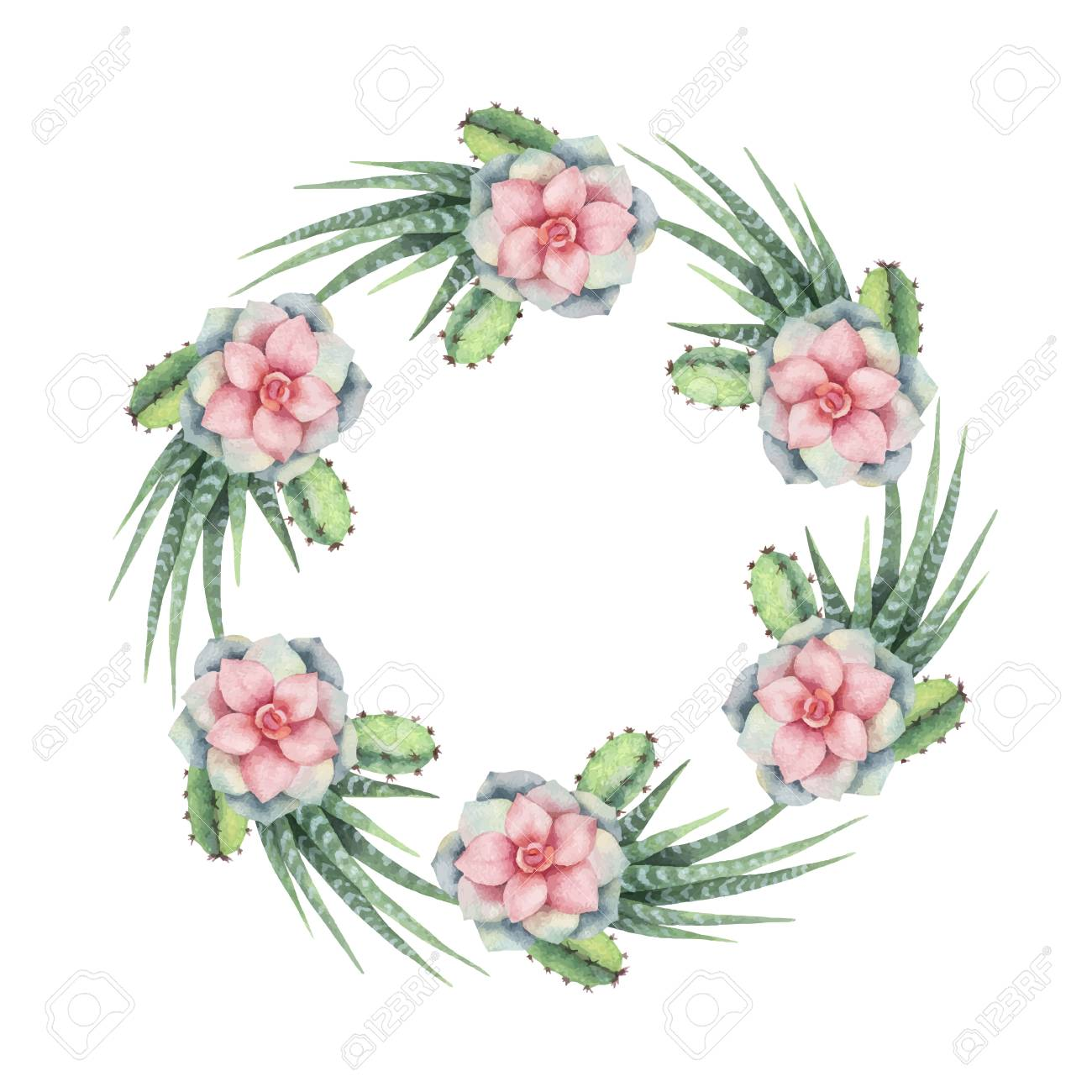 Watercolor vector wreath of cacti and succulent plants isolated...
