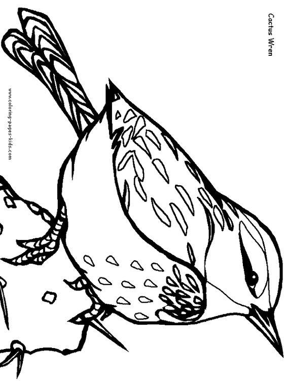 Cactus Wren bird coloring picture.