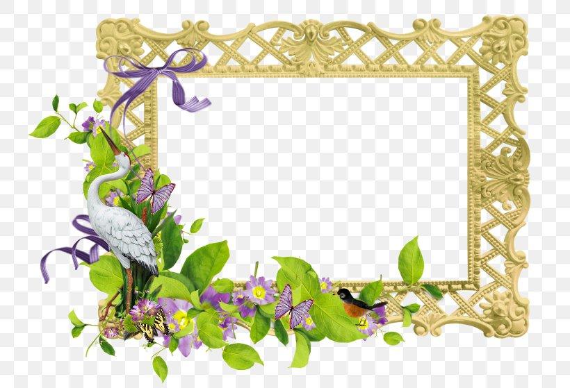 Picture Frames Cadre D\'entreprise Clip Art, PNG, 752x559px.