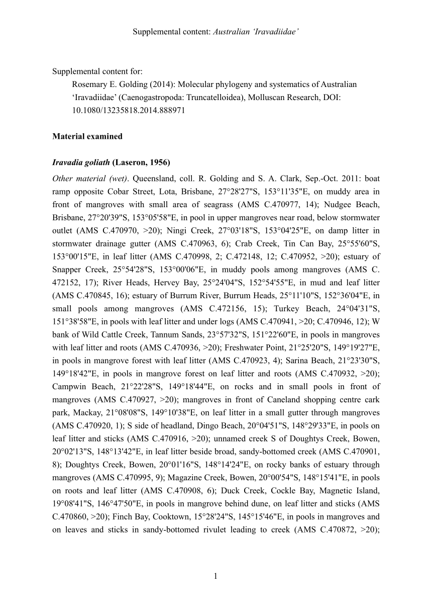 Molecular phylogeny and systematics of Australian 'Iravadiidae.