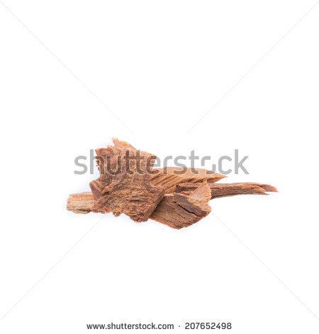 Leguminosae.