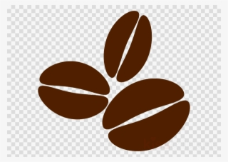 Coffee Bean Vector PNG, Transparent Coffee Bean Vector PNG.
