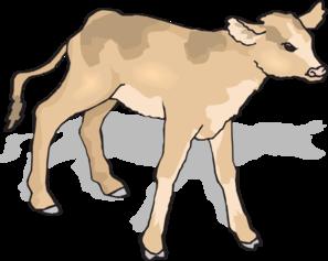 Calf Clip Art.
