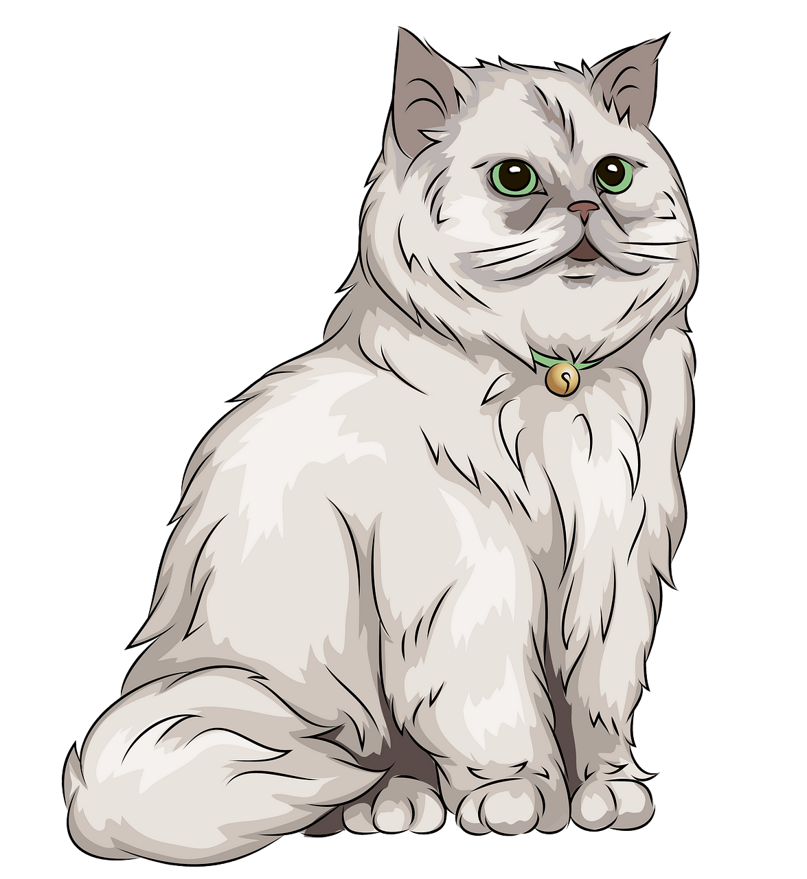 Persian Cat clipart. Free download..
