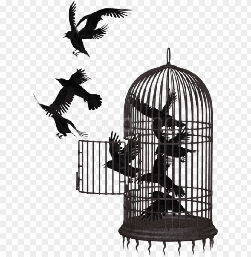 free png download cage bird crow clipart png photo.