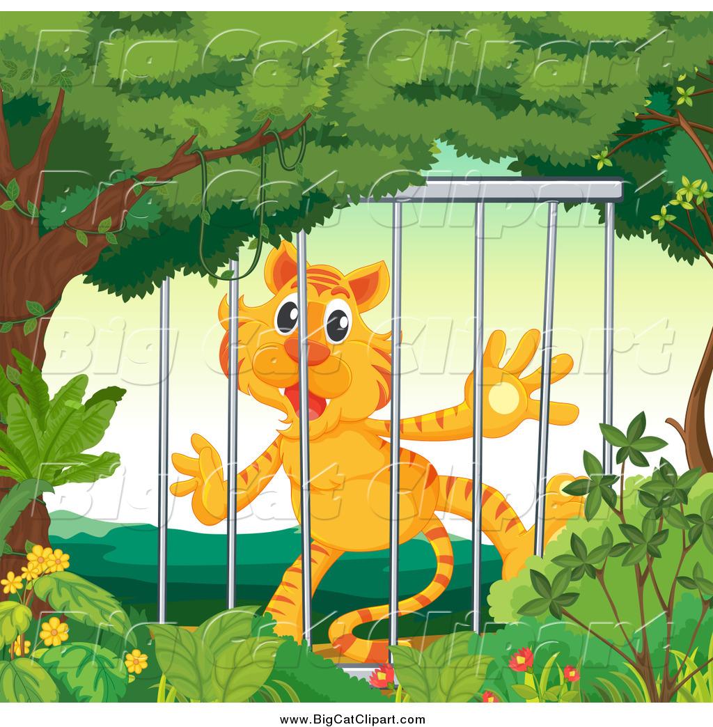 Royalty Free Zoo Stock Big Cat Designs.