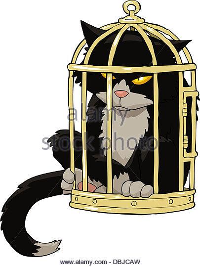 Cat Bird Cage Stock Photos & Cat Bird Cage Stock Images.