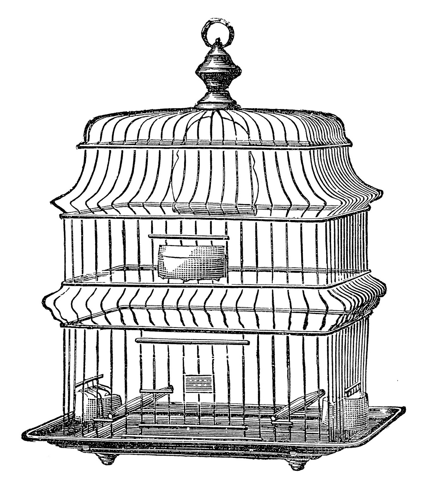 1000+ images about Bird cages for rooms on Pinterest.