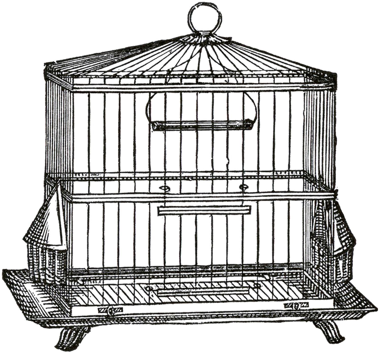 Vintage Wire Bird Cage Image.