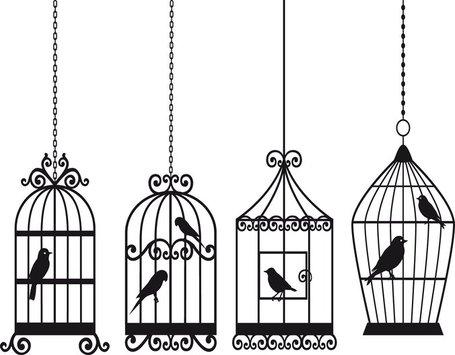 Bird Clip Art, Vector Bird.