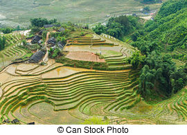 Stock Photo of Laos Rice Field Hut.
