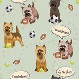 Cairn Terrier Stock Illustrations.