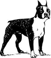 Cairn Terrier clip art Free Vector.