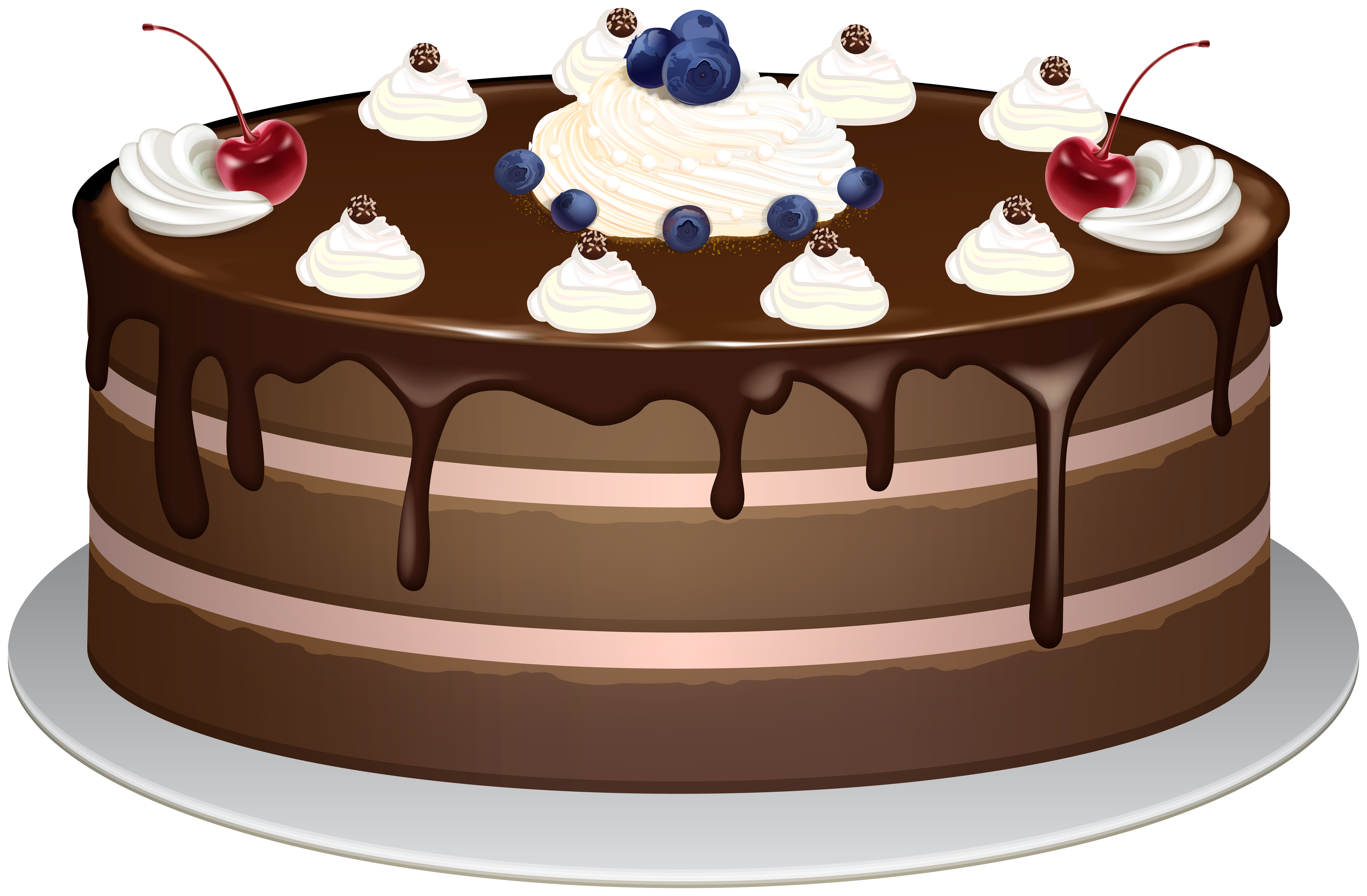Chocolate Cake PNG Clipart.