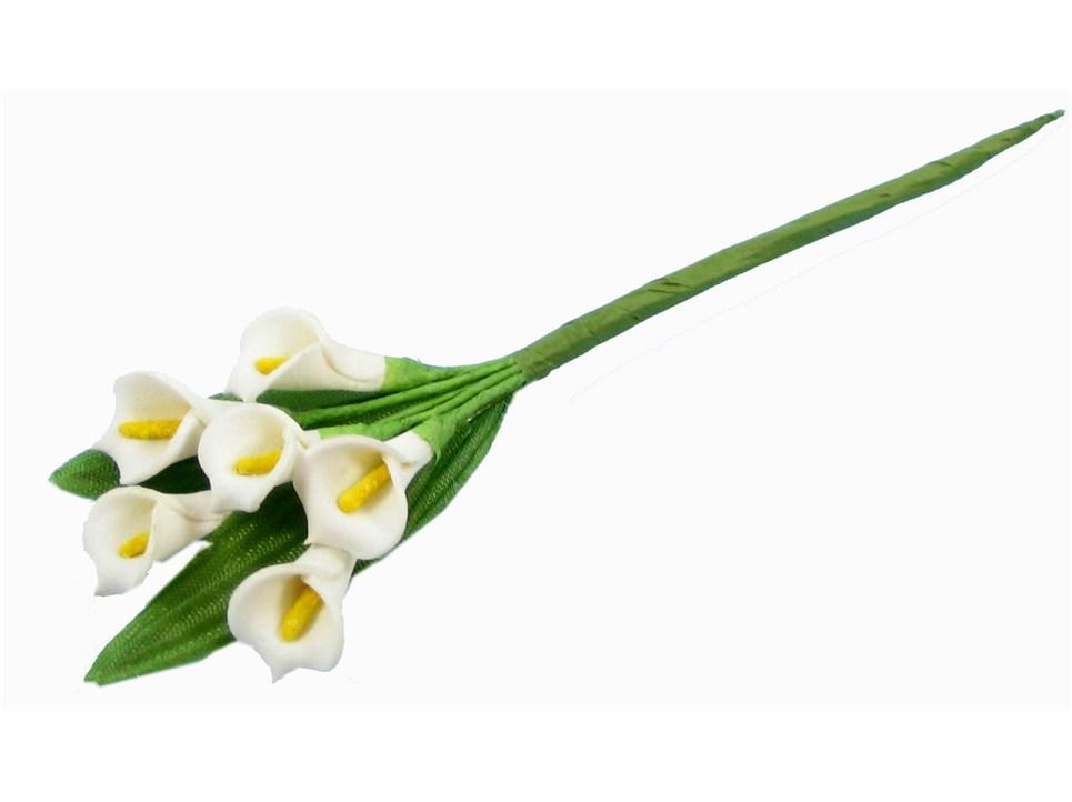 Cala lily clip art free.