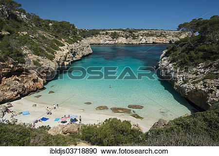 "Stock Photography of ""Bay with a sandy beach and pine trees, Cala."