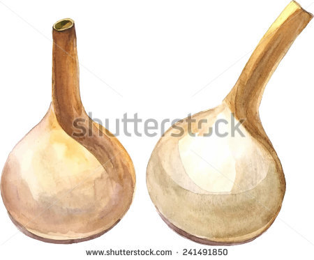 Calabash Stock Photos, Royalty.