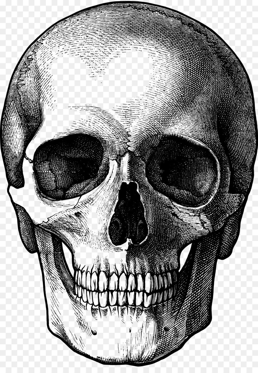 Calavera Skull Silhouette Clip art.