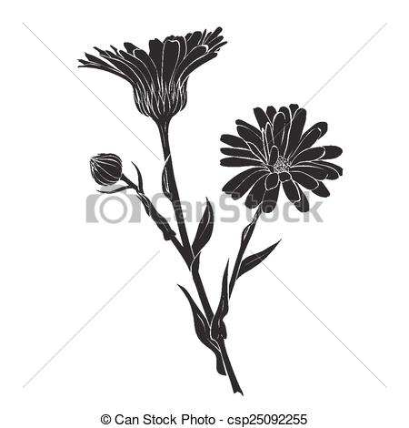 Clipart Vector of Hand drawn flowers.