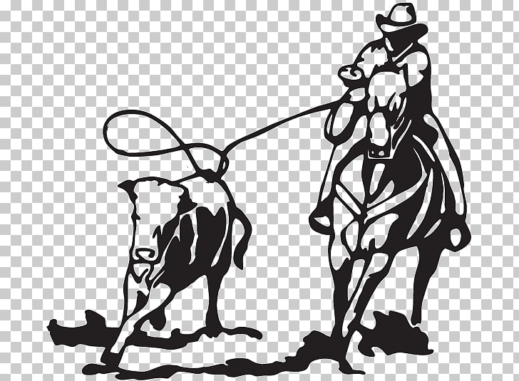Calf roping Team roping Breakaway roping Rodeo Cattle.