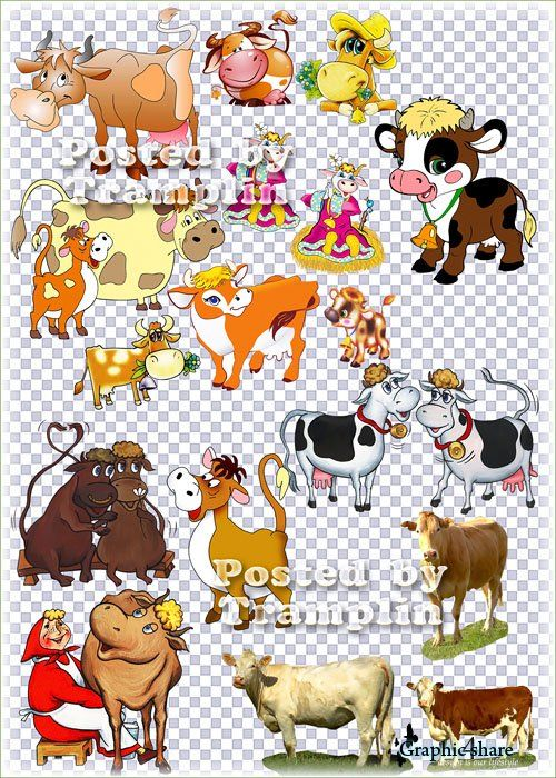 Clipart on the transparent.