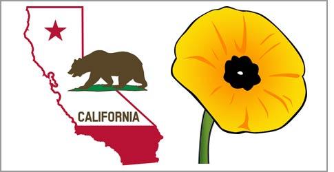Clip art california.