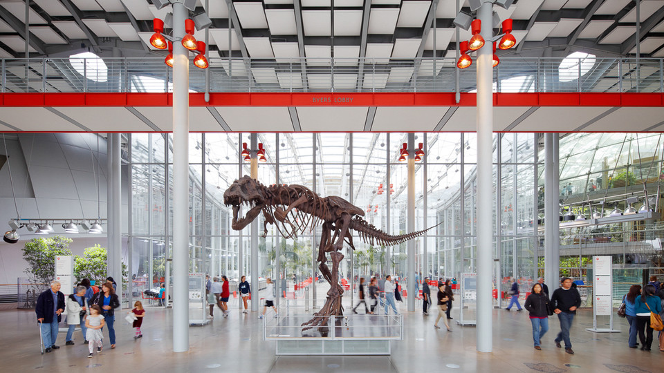 California Academy of Sciences Hours & Admission.