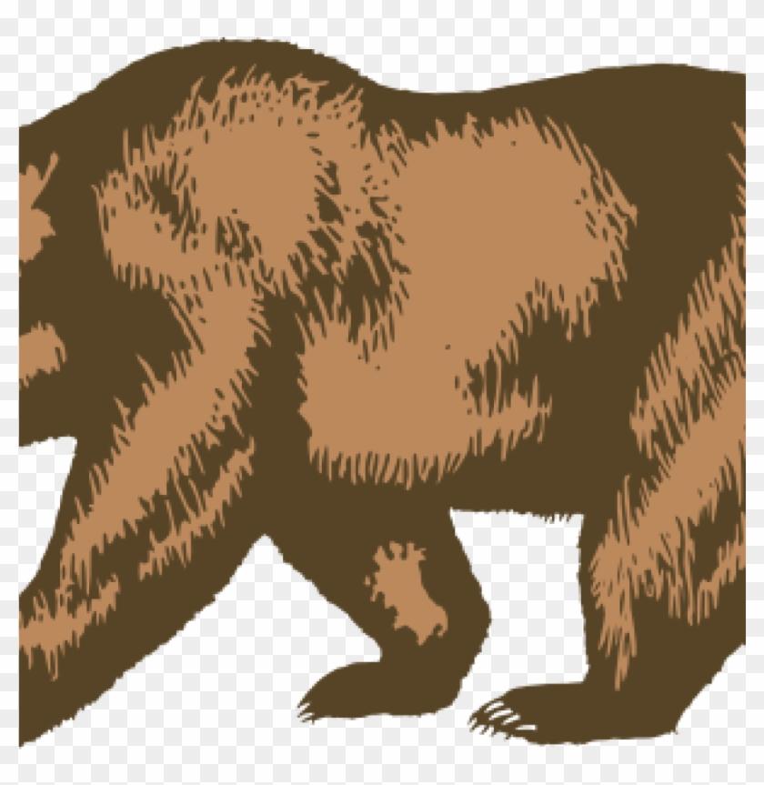 California Bear Outline Clip Art At Clker Vector Online.