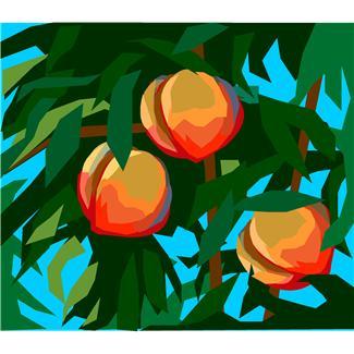 California Fruit Recall.