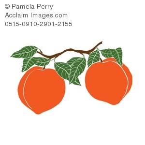 Clip Art Illustration of Peaches on a Branch.