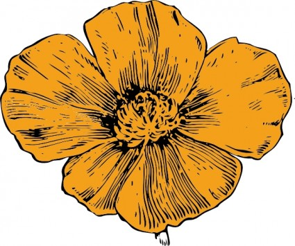 California Poppy Flower Clipart.