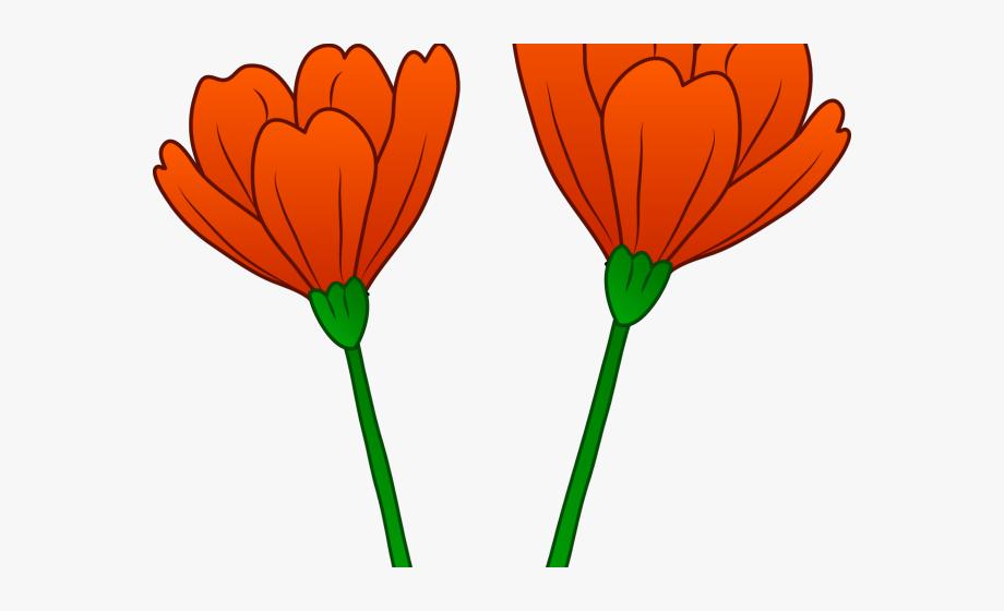 Poppy Clipart Orange Poppy.