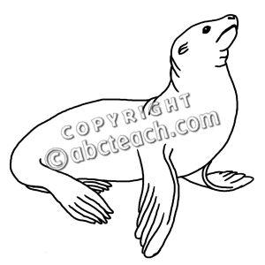 Clipart sea lion.