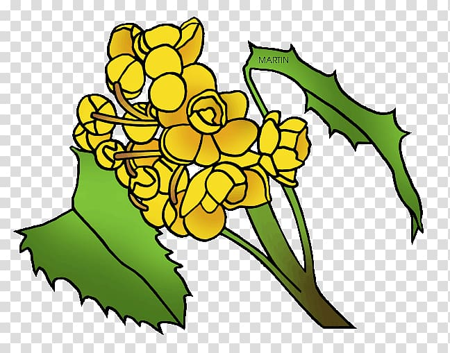 Oregon Grape California State flower, flower transparent.