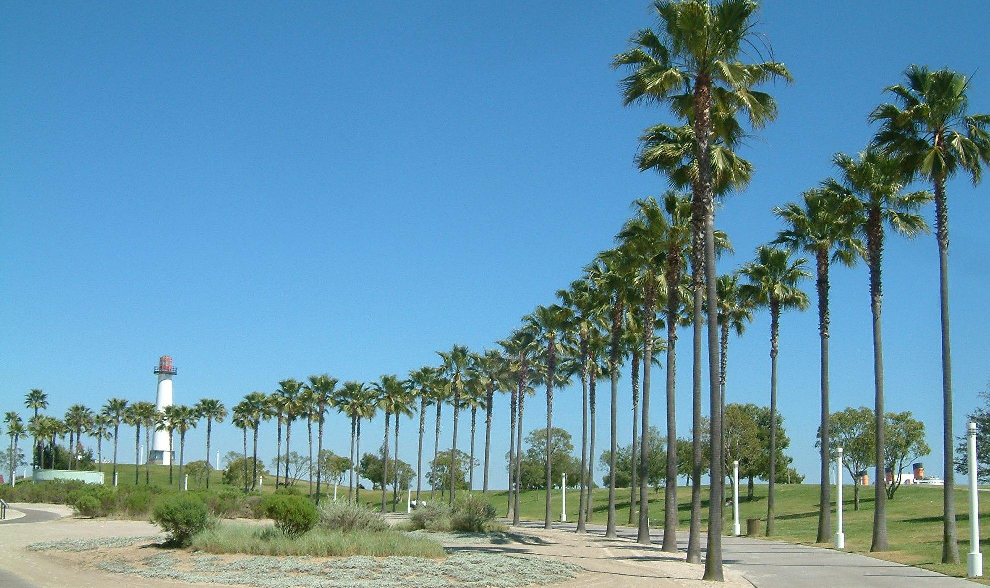 File:Long Beach 03.jpg.