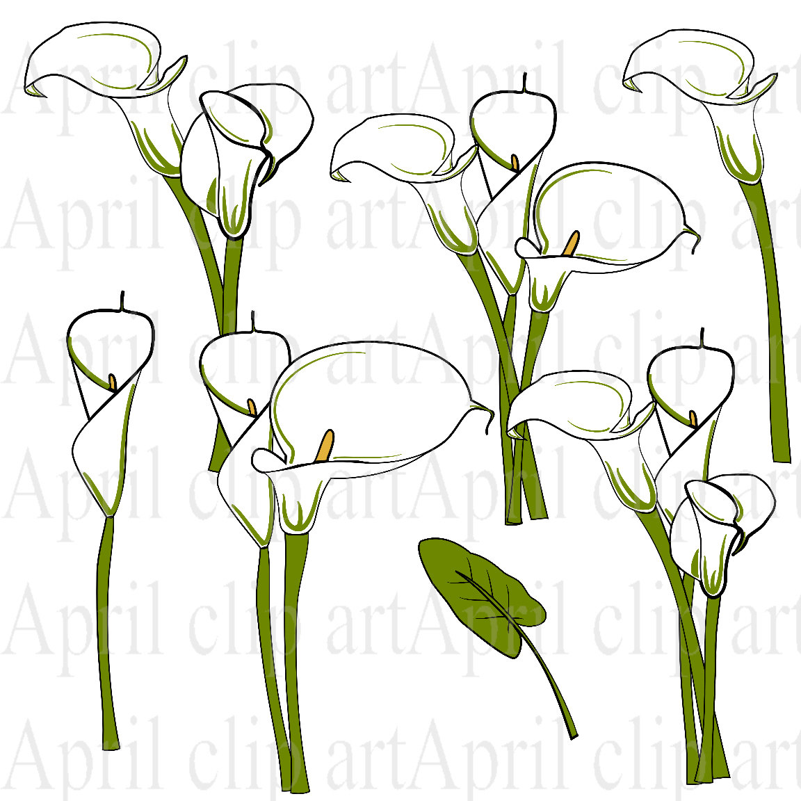 Purple calla lily clipart.