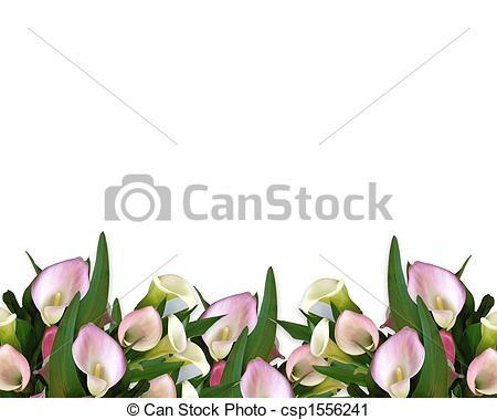 Calla lily Clipart and Stock Illustrations. 553 Calla lily vector.