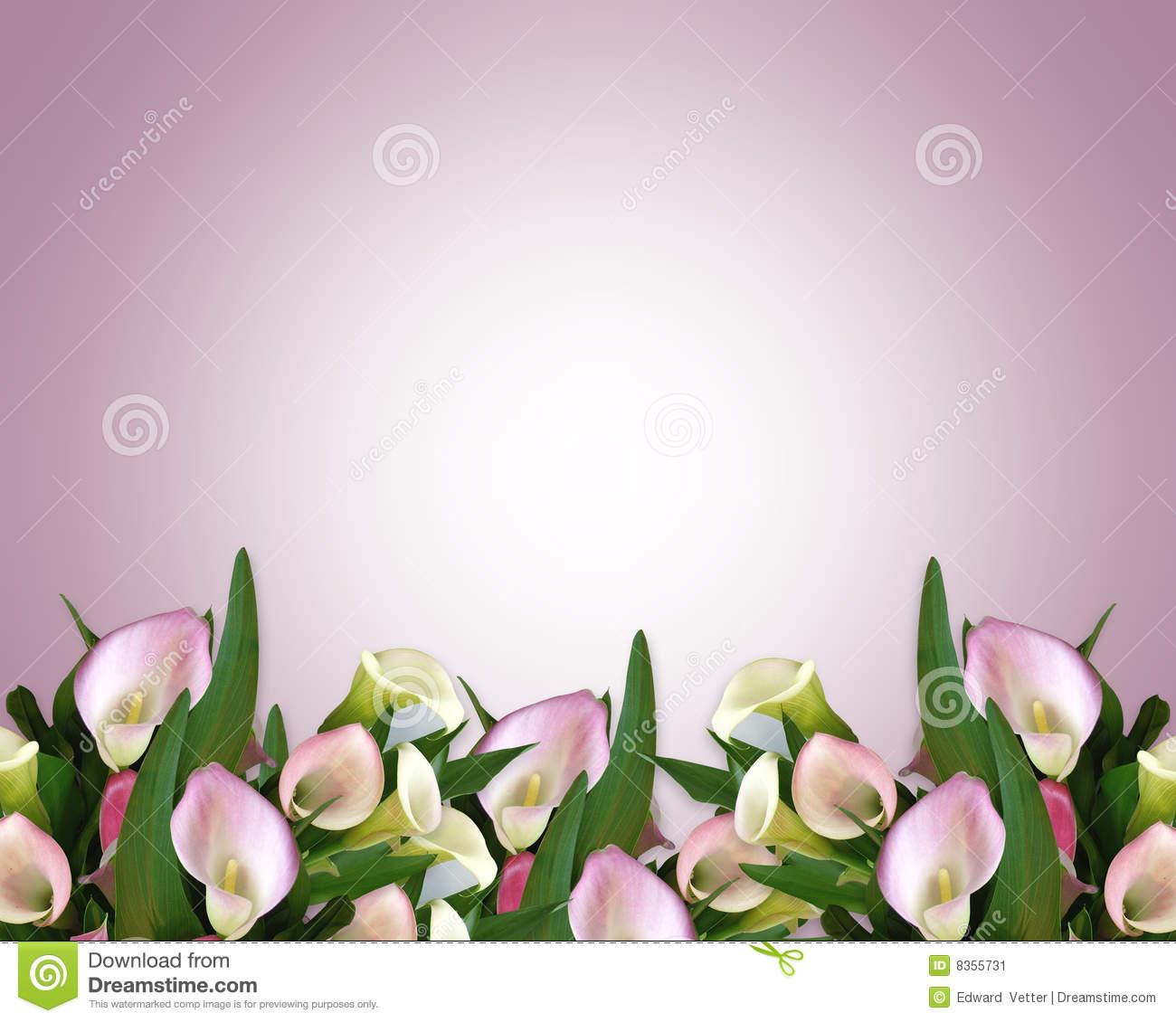 Calla Lily Border mauve stock illustration. Illustration of greeting.