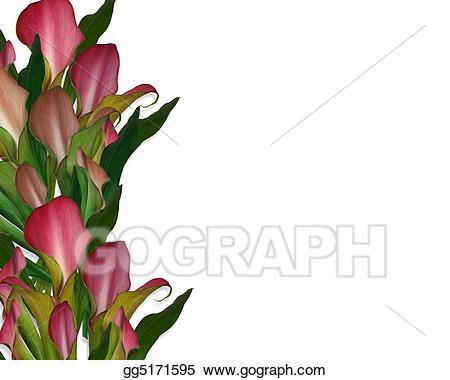 Calla lily border clipart 3 » Clipart Portal.