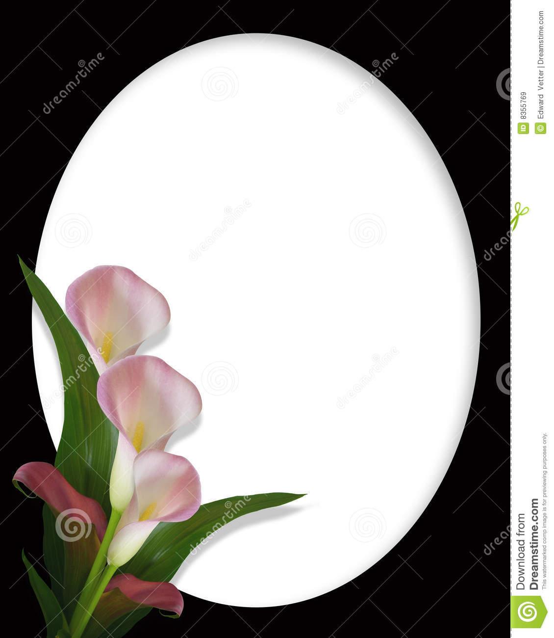 Calla Lilies Border On Black Oval Frame Stock Illustration.