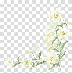 All About Lily Chou Chou transparent background PNG clipart.
