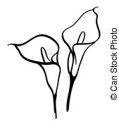 Calla lily Clipart and Stock Illustrations. 1,054 Calla lily.