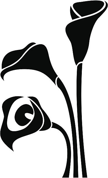 Lily Clipart Black And White.
